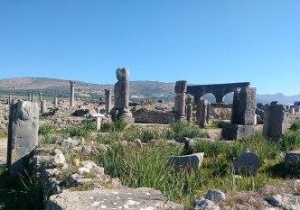 Volubilis's Ruins